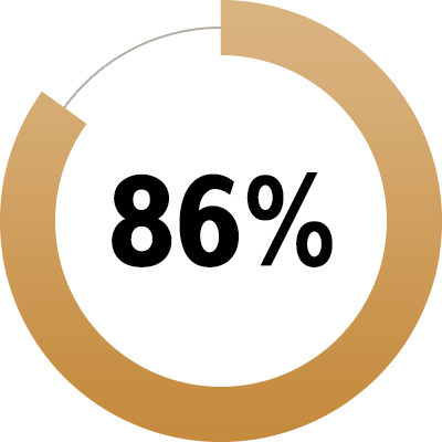 Pie chart showing 86 percent