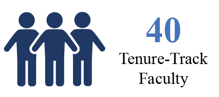 40 tenure-track faculty