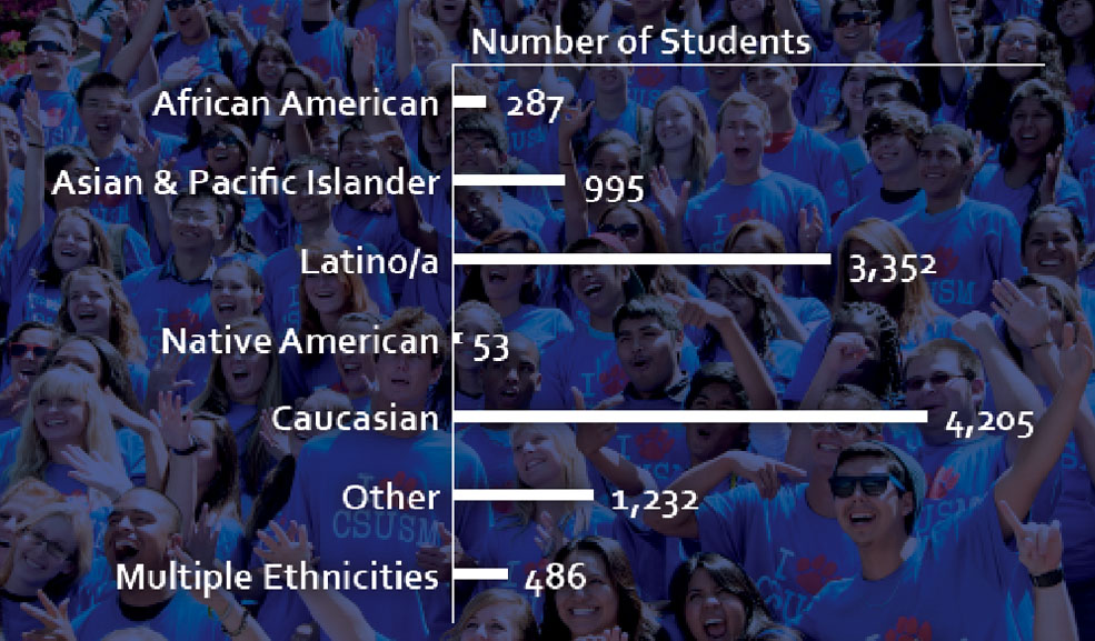 Ethnicity Graph of Students at CSUSM