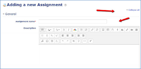 add name of assignment