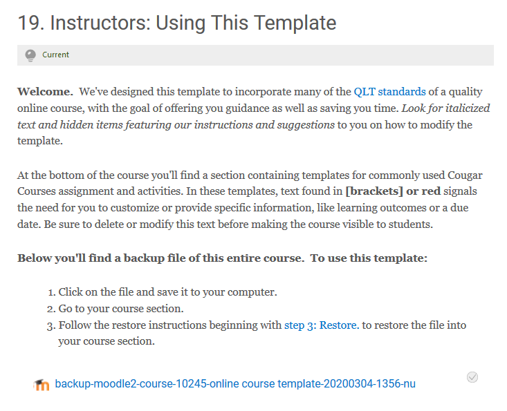 Instructors: Use this Template section
