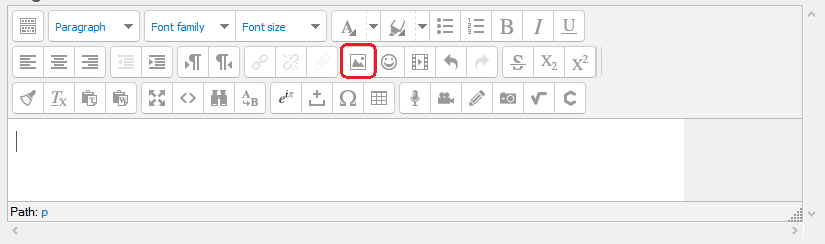 toolbar with insert picture icon
