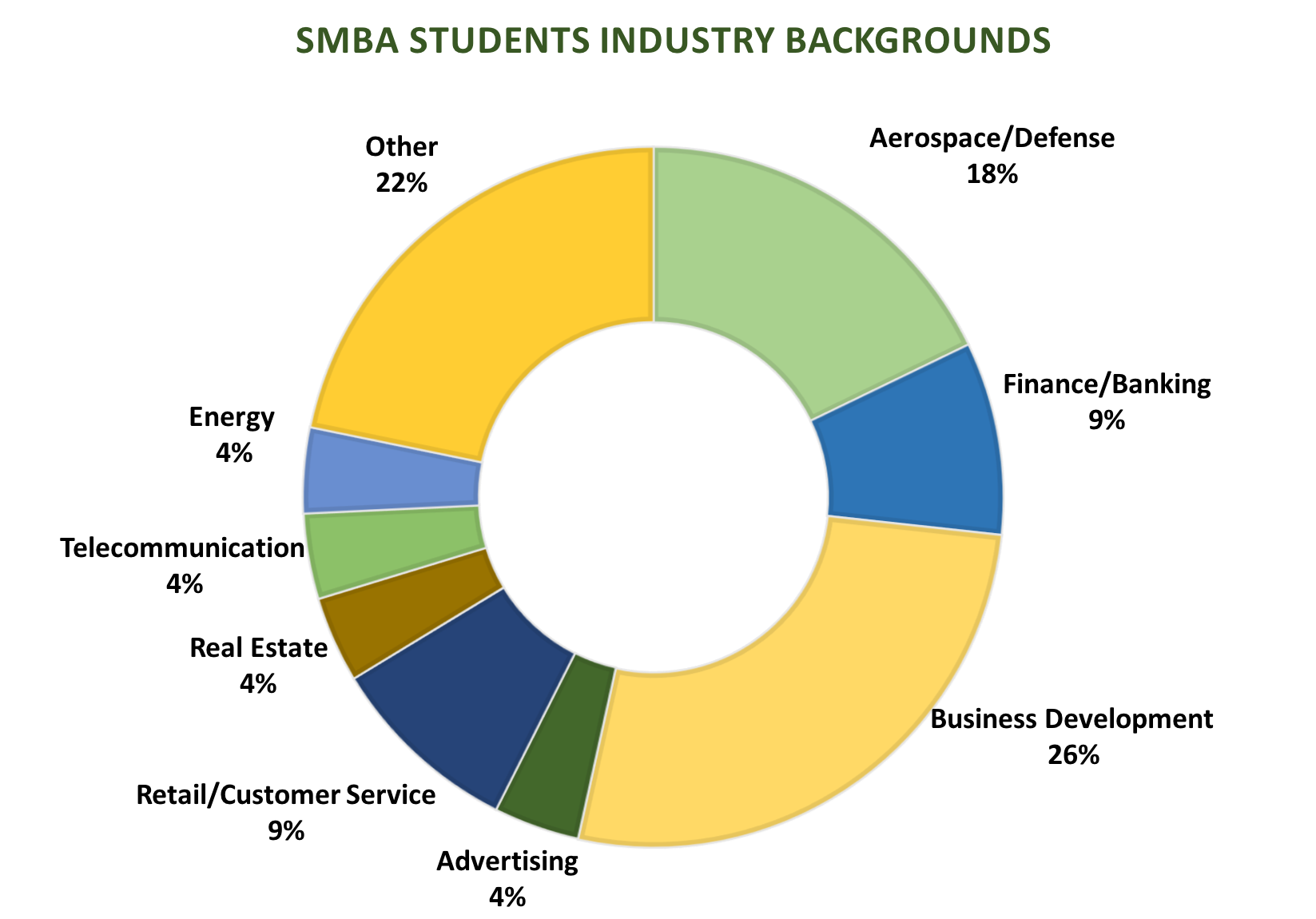 SMBA Students industry background