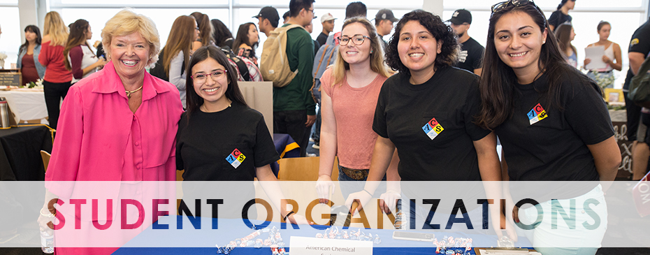 Students at the organization fair
